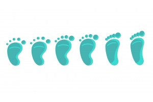 Development stages of feet